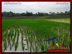 2,400 m2 LAND FOR SALE IN TABANAN BALI TJTB263