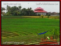 Exotic TABANAN BALI 1,775 m2 LAND FOR SALE TJTB264