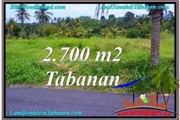 Exotic PROPERTY 2,700 m2 LAND SALE IN TABANAN BALI TJTB301