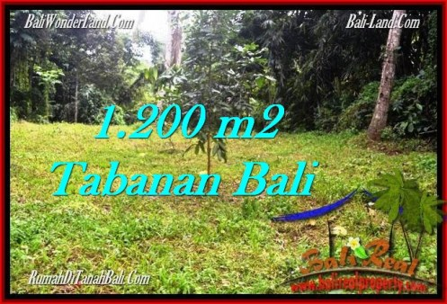 Affordable PROPERTY LAND IN TABANAN FOR SALE TJTB278