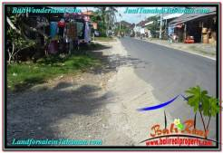 Affordable LAND SALE IN Tabanan Kota BALI TJTB296