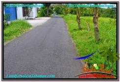 Beautiful 2,700 m2 LAND SALE IN TABANAN BALI TJTB301