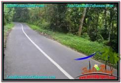 Magnificent PROPERTY 2,000 m2 LAND IN Tabanan Penebel FOR SALE TJTB303