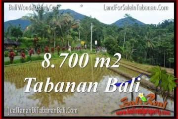 Exotic LAND SALE IN Tabanan Penebel BALI TJTB316