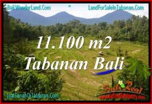 Magnificent PROPERTY 11,100 m2 LAND IN Tabanan Penebel BALI FOR SALE TJTB320