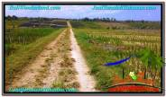 Exotic PROPERTY 450 m2 LAND FOR SALE IN Tabanan Kerambitan TJTB292