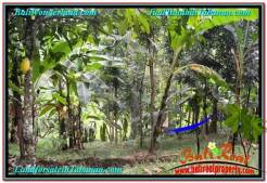 Beautiful PROPERTY Tabanan Penebel 5,500 m2 LAND FOR SALE TJTB295