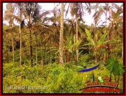 Exotic PROPERTY LAND FOR SALE IN Tabanan Penebel BALI TJTB322