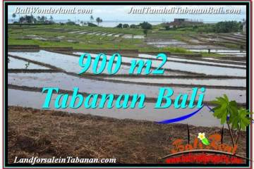 Affordable LAND IN TABANAN FOR SALE TJTB308