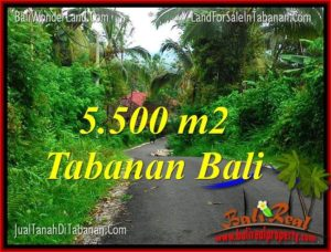 Beautiful LAND FOR SALE IN TABANAN BALI TJTB323