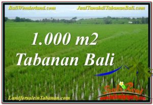 FOR SALE LAND IN TABANAN BALI TJTB307
