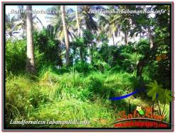 Magnificent PROPERTY Tabanan Selemadeg 8,400 m2 LAND FOR SALE TJTB326