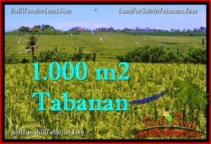 Exotic PROPERTY 1,000 m2 LAND IN Tabanan Selemadeg FOR SALE TJTB266