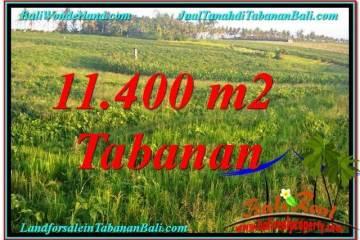Exotic PROPERTY LAND FOR SALE IN Tabanan Selemadeg BALI TJTB339