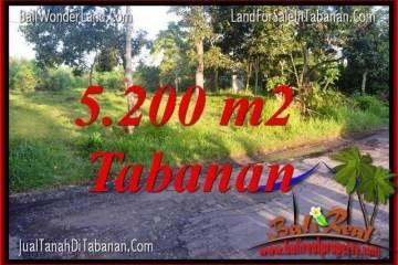 Beautiful PROPERTY 5,200 m2 LAND IN TABANAN BALI FOR SALE TJTB334