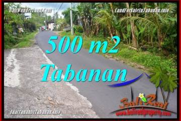 Beautiful LAND IN Tabanan Kerambitan FOR SALE TJTB362