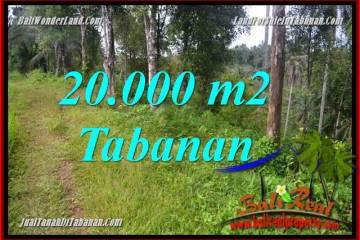 Exotic PROPERTY LAND IN TABANAN BALI FOR SALE TJTB365