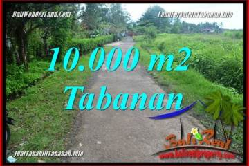 Magnificent PROPERTY LAND IN Tabanan Selemadeg BALI FOR SALE TJTB354