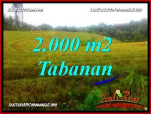 Affordable 2,000 m2 LAND FOR SALE IN TABANAN BALI TJTB356