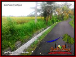 Beautiful LAND IN TABANAN FOR SALE TJTB356