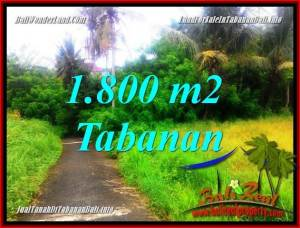 FOR SALE Exotic LAND IN TABANAN BALI TJTB357