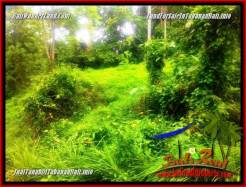 Affordable PROPERTY 1,850 m2 LAND IN TABANAN FOR SALE TJTB357