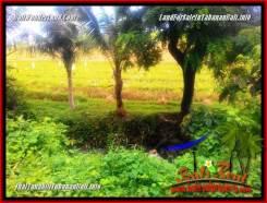 Affordable PROPERTY 1,850 m2 LAND IN TABANAN FOR SALE TJTB357