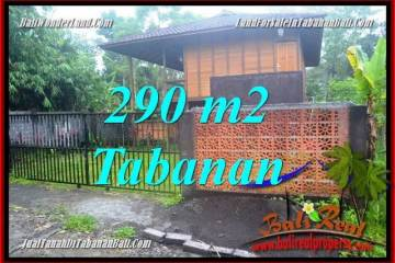 Magnificent PROPERTY 290 m2 LAND SALE IN Tabanan Penebel TJTB358