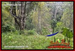 Exotic LAND SALE IN Tabanan Selemadeg Timur TJTB364