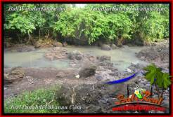 Magnificent PROPERTY LAND FOR SALE IN TABANAN Selemadeg Timur BALI TJTB368