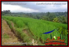 Magnificent PROPERTY Tabanan Selemadeg 2,280 m2 LAND FOR SALE TJTB374