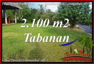 Magnificent PROPERTY 2,100 m2 LAND IN TABANAN FOR SALE TJTB393