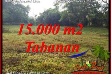 Beautiful TABANAN KOTA 15,000 m2 LAND FOR SALE TJTB381