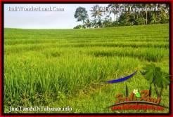 LAND IN TABANAN FOR SALE TJTB394
