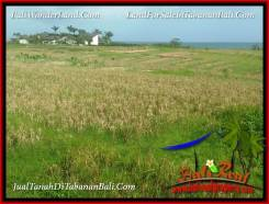 Magnificent LAND FOR SALE IN TABANAN SELEMADEG TJTB382