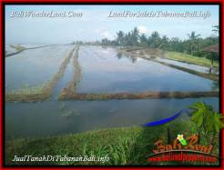 Magnificent PROPERTY LAND IN TABANAN SELEMADEG FOR SALE TJTB388