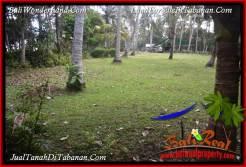 FOR SALE Affordable 2,500 m2 LAND IN TABANAN SELEMADEG BALI TJTB391