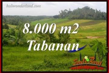 Magnificent Property Land in Tabanan Bali for sale TJTB397
