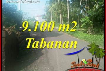 Magnificent 9,100 m2 Land sale in Tabanan Bali TJTB407