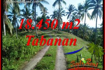 Exotic 18,450 m2 Land sale in Tabanan Bali TJTB410