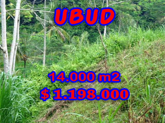 ExtraordinaryLand for sale in Ubud Bali, rice paddy view in Ubud Pejeng– TJUB238