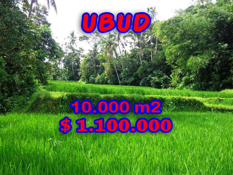Land for sale in Ubud 10.000 m2 in Ubud Tegalalang Bali