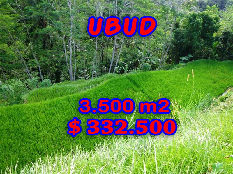 Exotic 3.500 m2 Land for sale in Ubud Bali