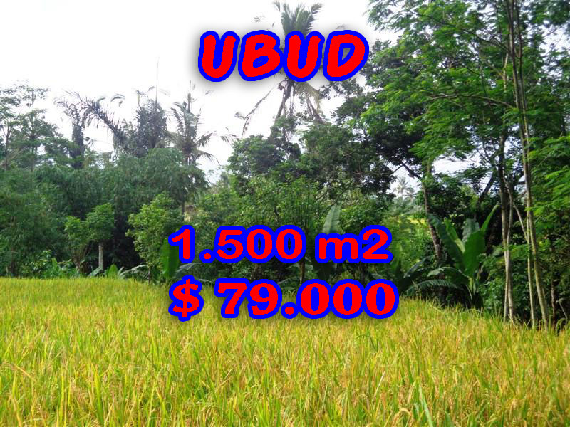 Astounding Property for sale in Bali, Land in Ubud for sale– 1.500 sqm @ $ 52