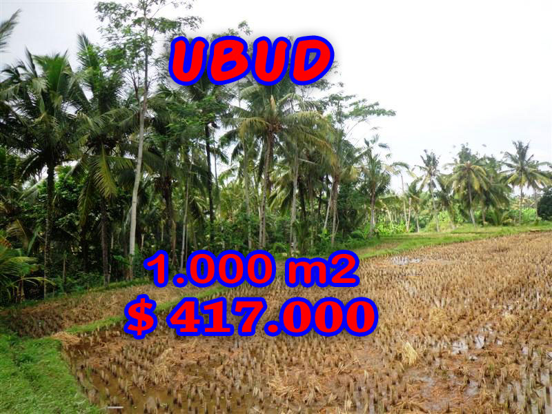 Land in Ubud Bali for sale, Incredible view in Ubud Center – TJUB236