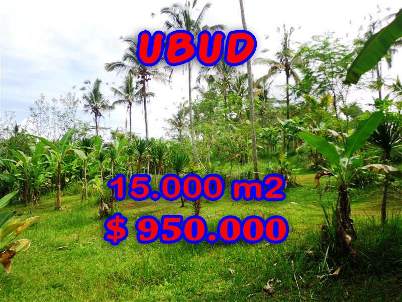 Land in Ubud Bali for sale, Eye-catching view in Ubud Payangan – TJUB261