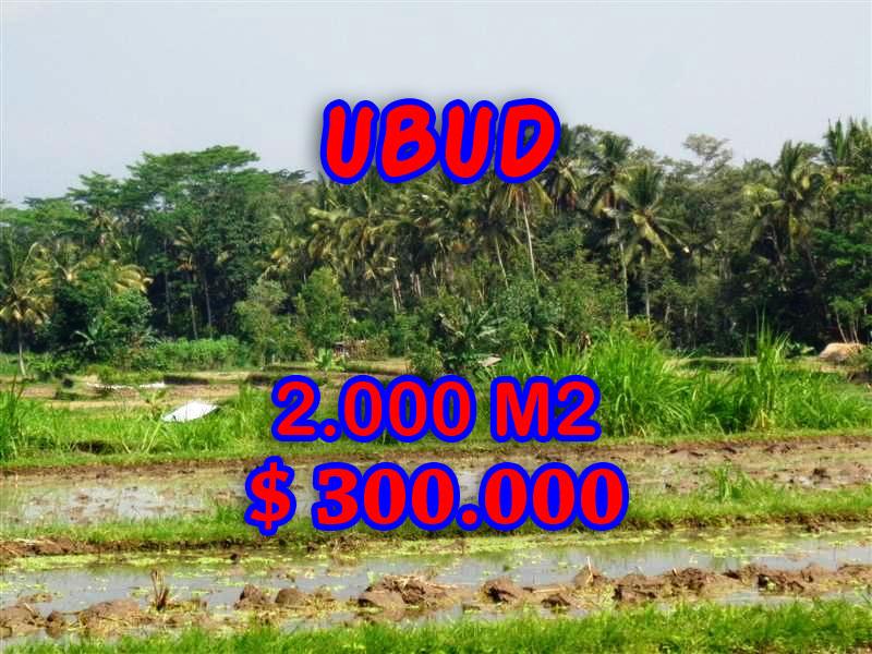 Land in Ubud for sale, Amazing view in Ubud Tampak siring Bali – TJUB267