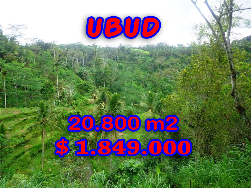 Land in Bali for sale, Excellent Property in Ubud Bali – 20,800 sqm @ $ 89