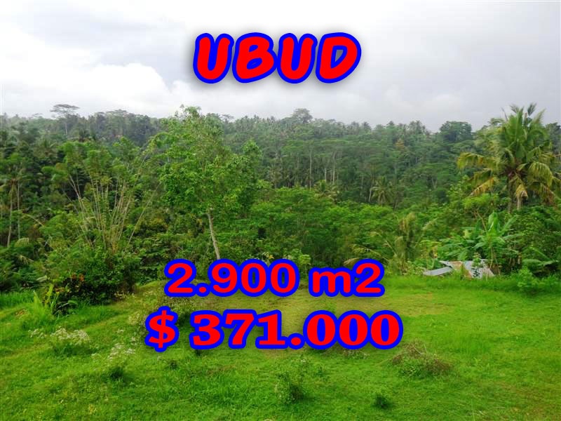 Exotic Land for sale in Ubud Bali by Bali Real property– TJUB272