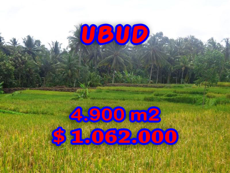 Land for sale Ubud Bali Fantastic view in Ubud Center – TJUB278